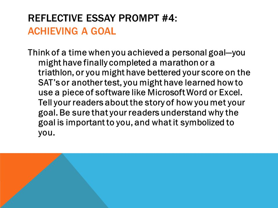 Persuasive essay into the wild